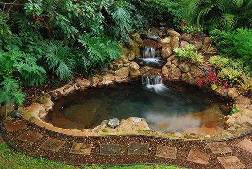 Backyard jacuzzi