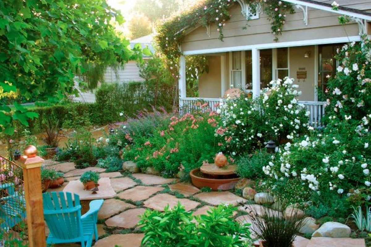 Most Popular Garden Plant Types For A Cottage Garden