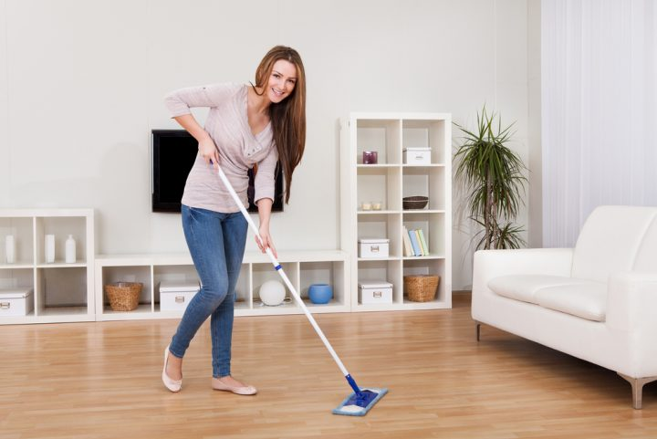 Home Cleaning Tips For Cat And Dog Owners