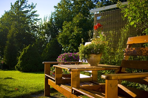 backyard relaxation place