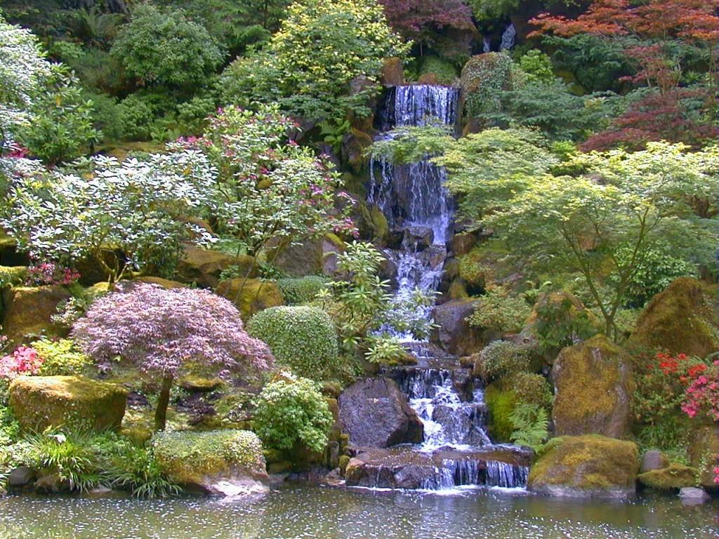 Japanese Gardens 3