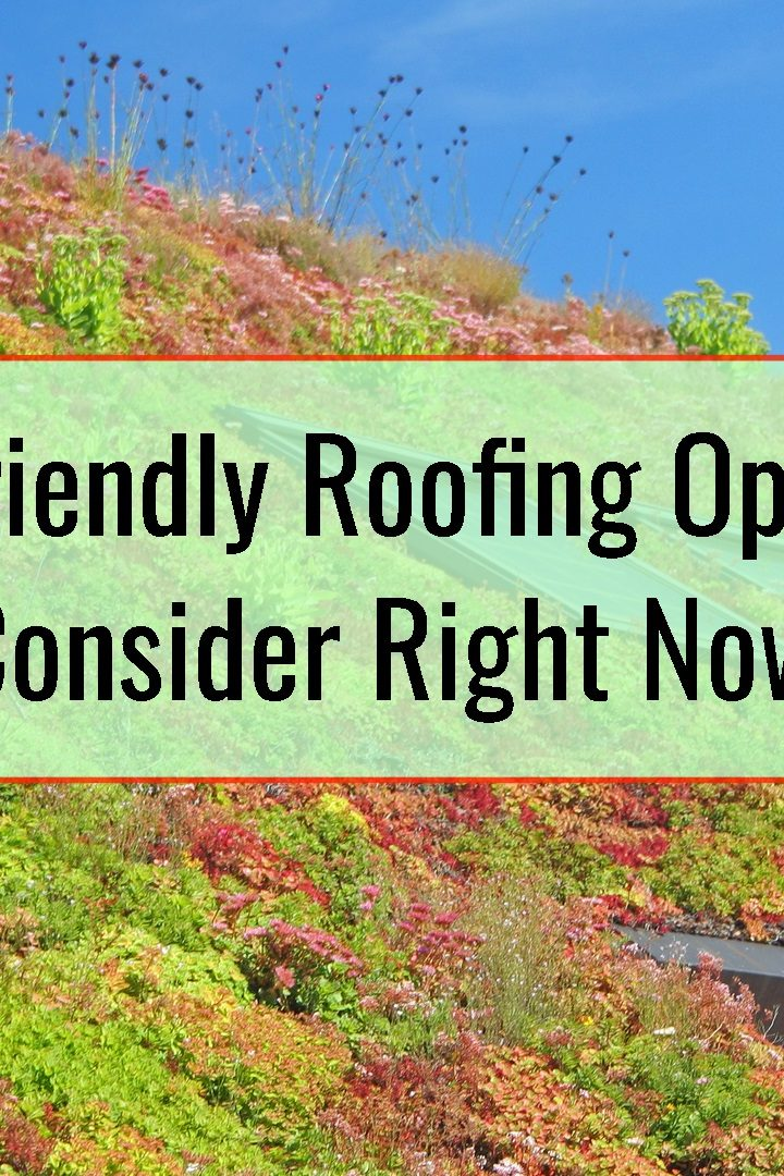 3 Eco-Friendly Roofing Options To Consider Right Now