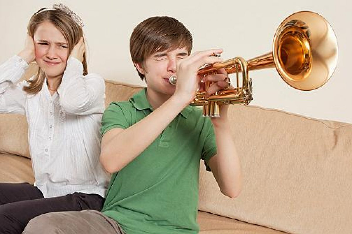 How To Eliminate Home Noise Polution