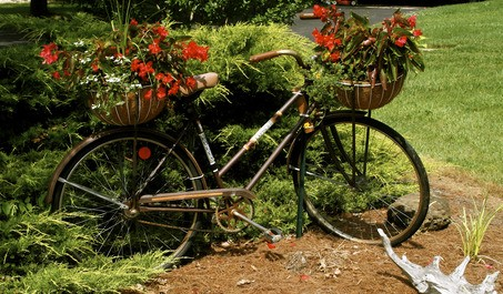 Old Bicycle Planter