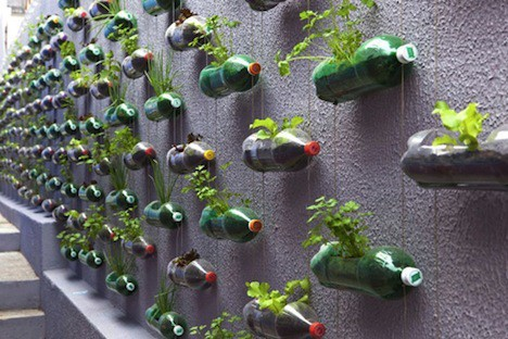 Soda Bottles, Small Planters