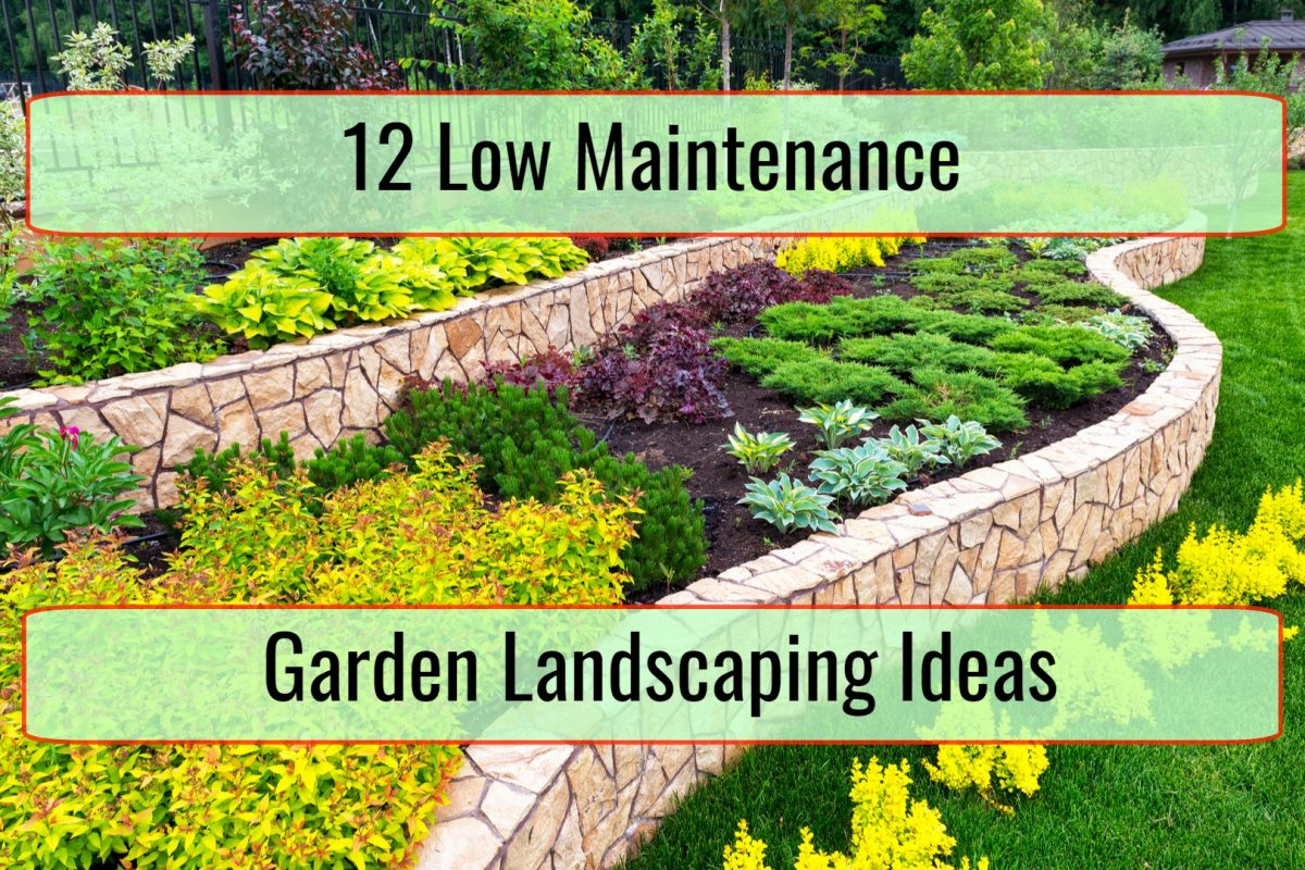 12 Low Maintenance Garden Landscaping Ideas