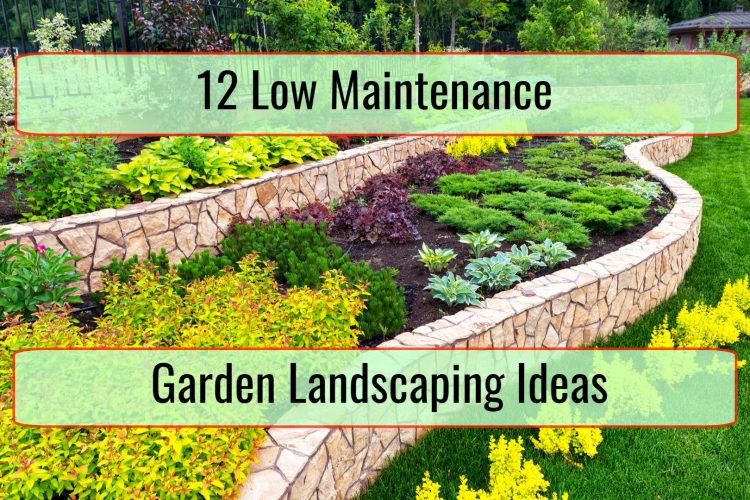12 Low Maintenance Garden Landscaping Ideas