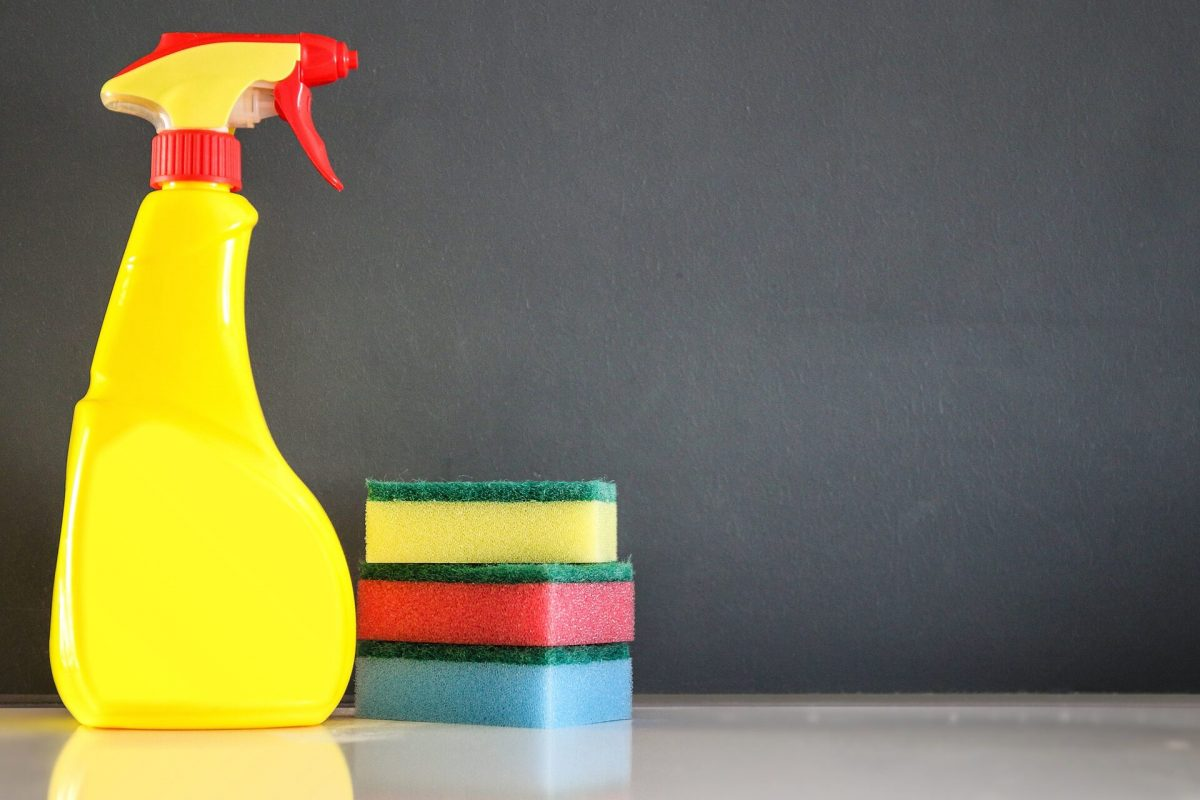 Why You Should Hire an End-Lease Cleaning Professional